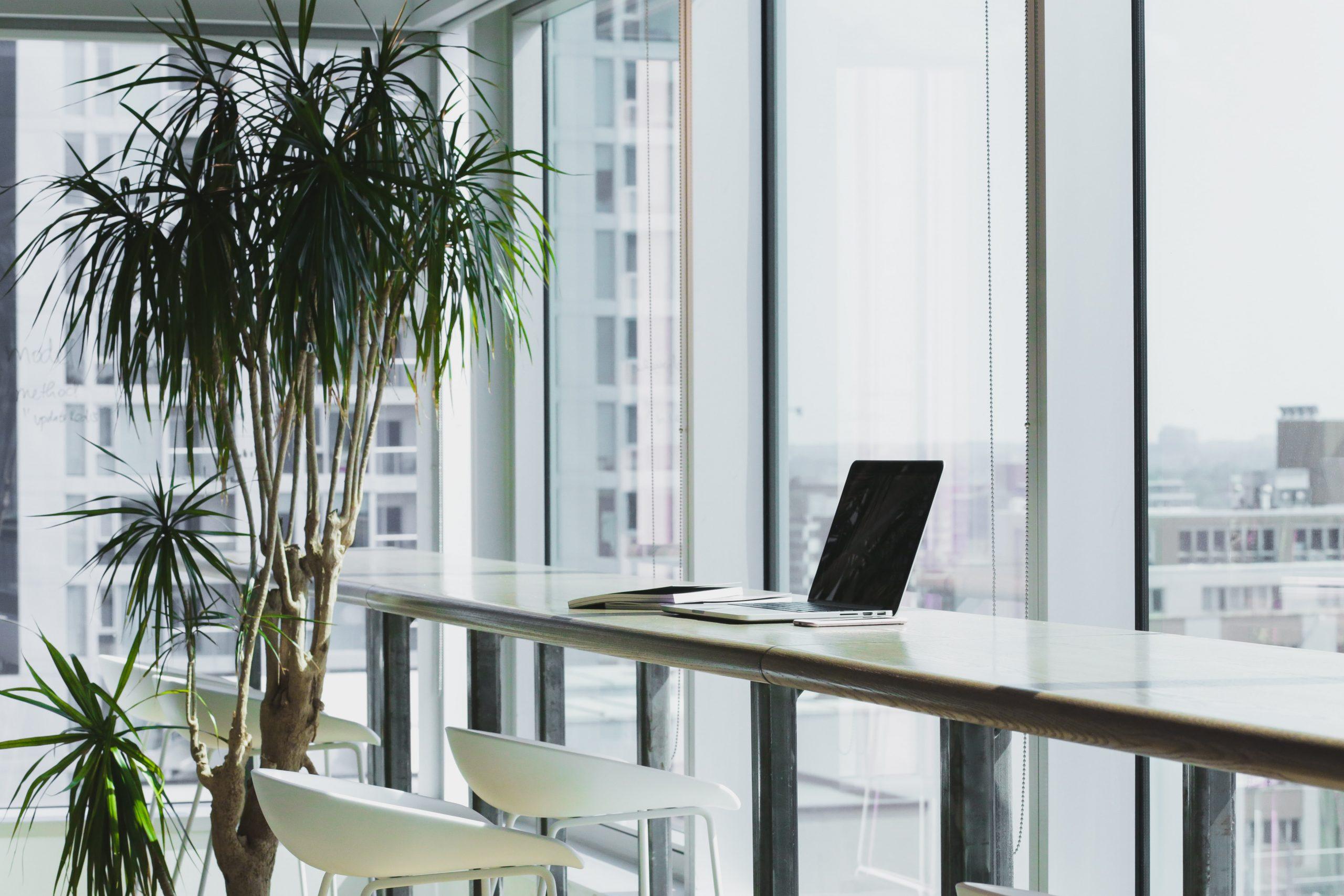 Aislamiento de ventanas para tu oficina